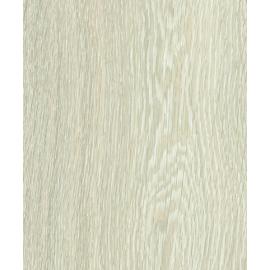 Mountain Oak